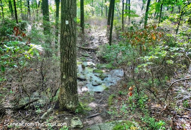Victory Trail - stream crossing