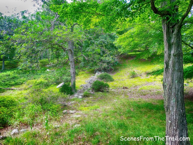 unmarked Sloatsburg Trail