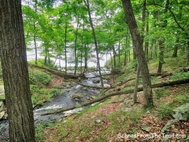 stream crossing on the Sloatsburg Trail