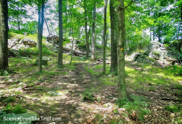 Triangle Trail