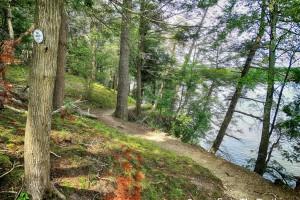 white-blazed River Trail