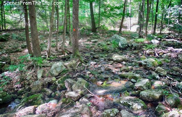 Hillburn-Torne-Sebago Trail