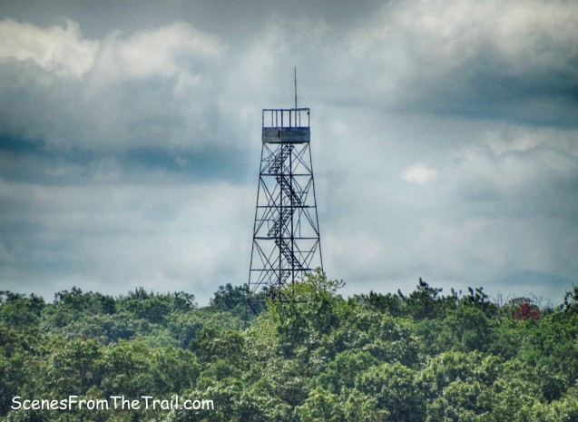 Black Rock Forest Fire Tower