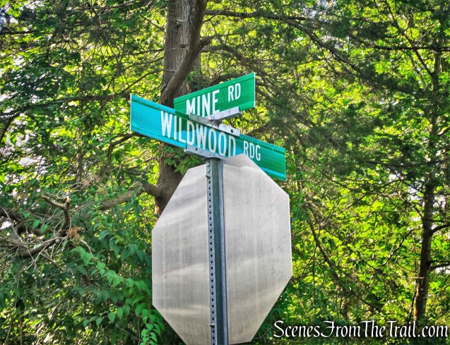 intersection with Wildwood Ridge