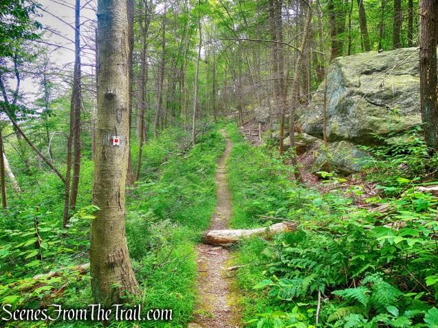 Popolopen Gorge Trail