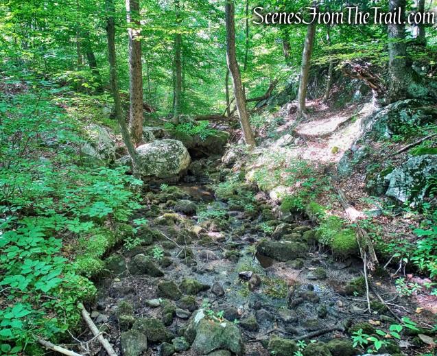 dry stream on Manaticut Point Trail