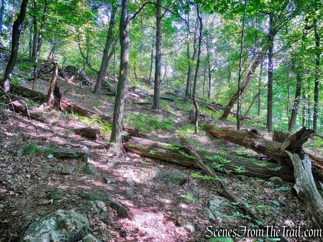 Manaticut Point Trail
