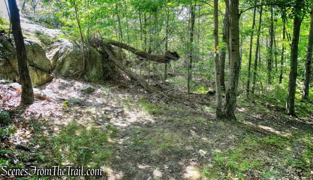 turn left to Overlook Rock