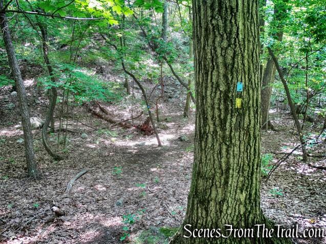 joint Hewitt-Butler/Manaticut Point Trails