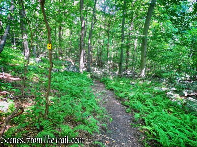 Manaticut Point Spur Trail