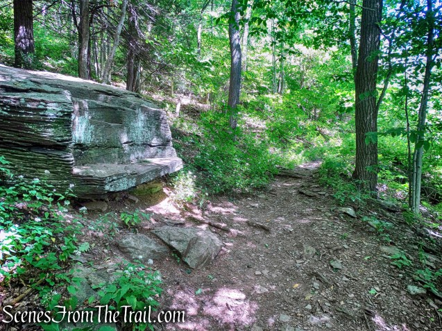 trail to Pratt Rock