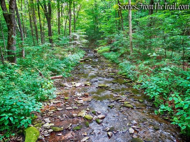 Alder Creek