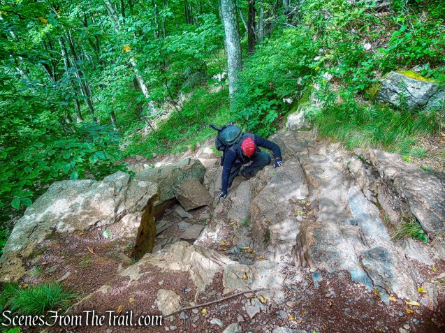 rock scramble - Escarpment Trail