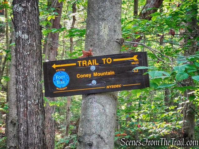 Coney Mountain Trail