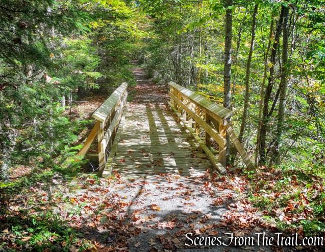 wooden footbridge - Goodman Mountain Trail