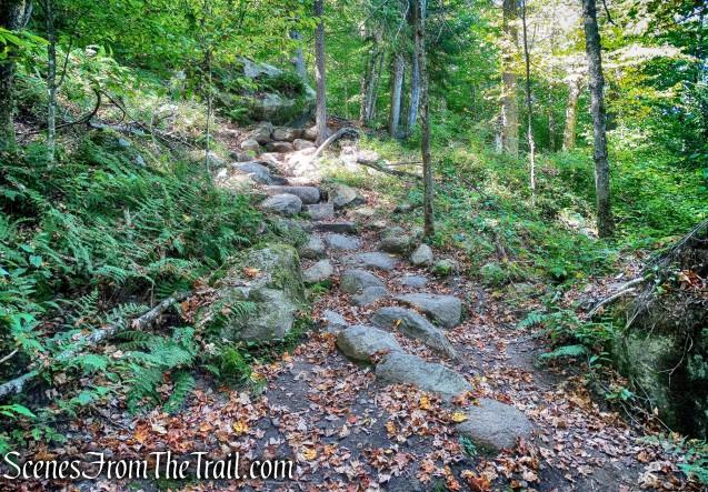 Goodman Mountain Trail