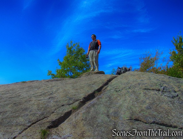 Coney Mountain summit