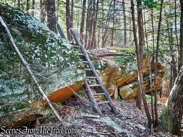 Ladder Trail - John Burroughs Nature Sanctuary