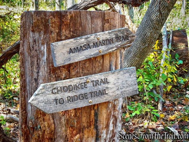 Amasa Martin Trail - John Burroughs Nature Sanctuary