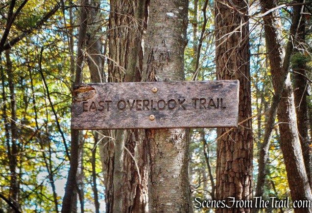 East Overlook Trail - John Burroughs Nature Sanctuary