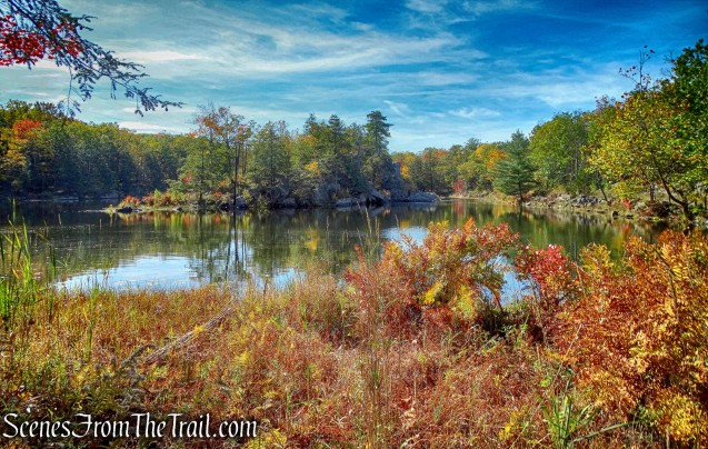 North Pond Trail - John Burroughs Nature Sanctuary