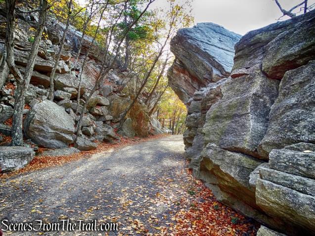 Undercliff Road