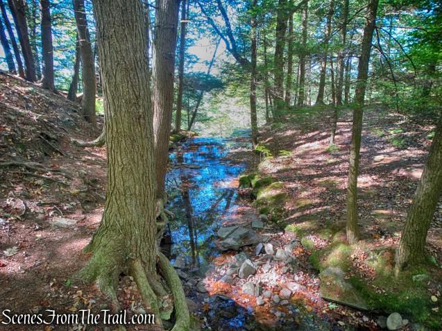 stream crossing - Bouchoux Trail
