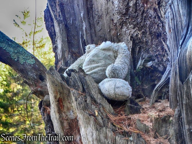 headless stuffed animal