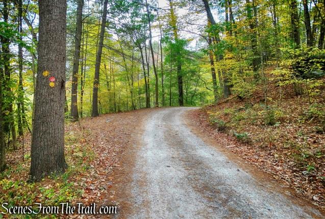 Ten Mile River/Tusten Mountain Trails