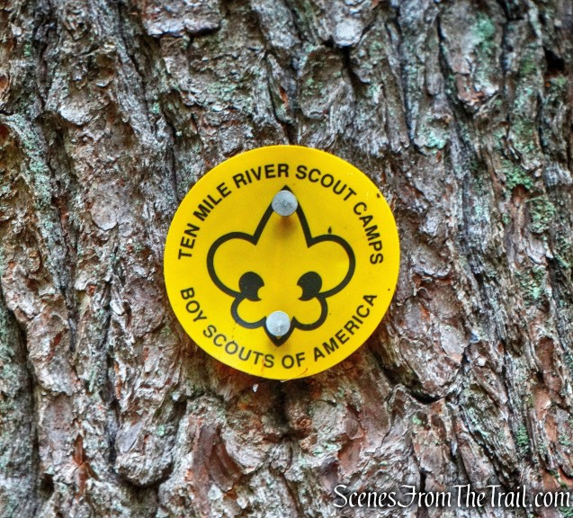 Yellow Boy Scout blaze - Tusten Mountain Trail
