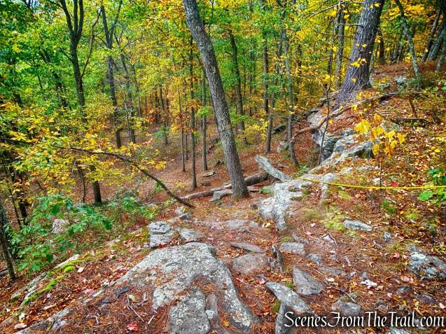 descent on Tusten Mountain Trail