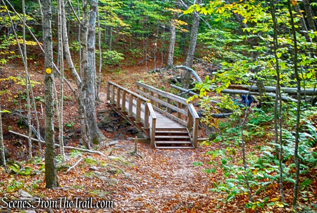 wooden footbridge - Phoenicia-East Branch Trail