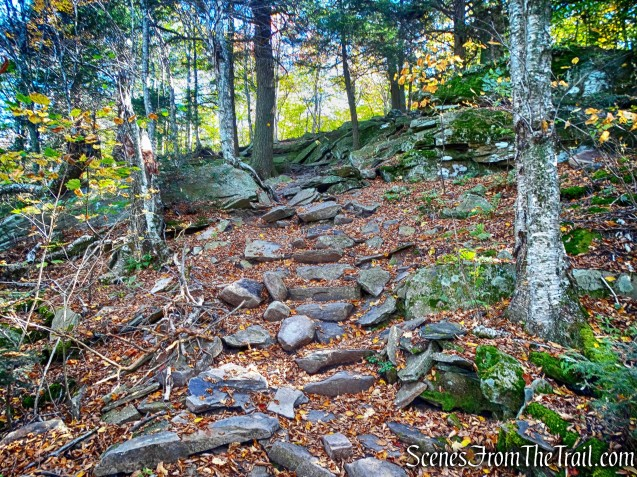 stone steps - Phoenicia-East Branch Trail