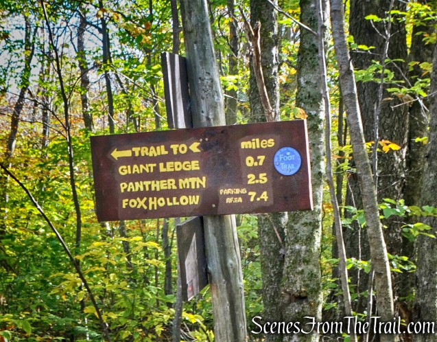 junction - Giant Ledge-Panther Mountain-Fox Hollow Trail