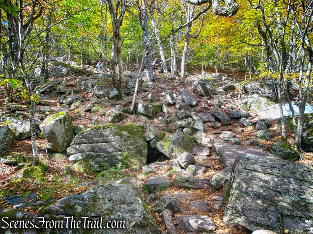 Giant Ledge-Panther Mountain-Fox Hollow Trail
