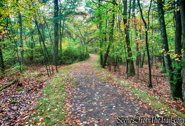 Main Trail - Bear Hill Nature Preserve