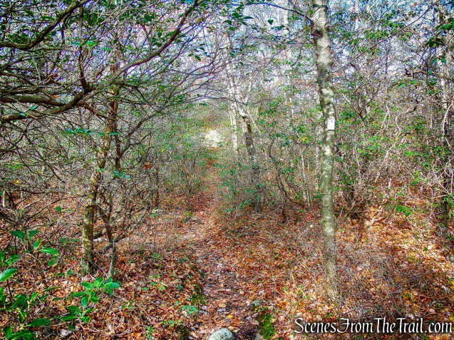Megaliths Trail