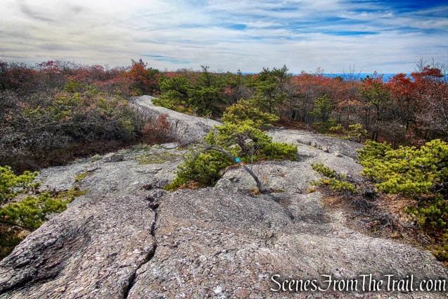 summit ofSchunemunk Mountain
