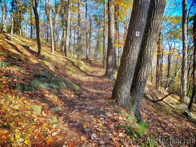 Arden-Surebridge (A-SB) Trail