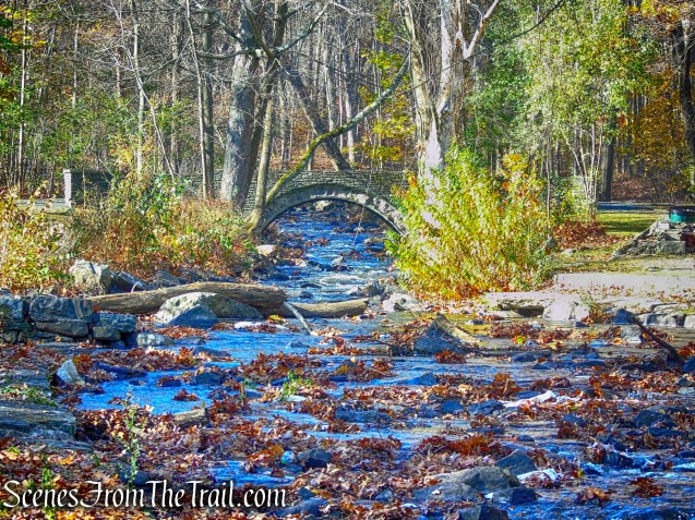 Unnamed brook - Algonquin Park