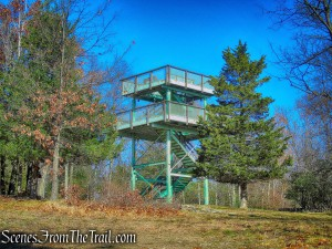 Observation Tower - Cronomer Hill Park