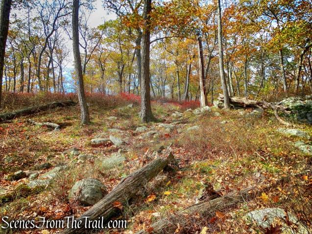 Hurst Trail
