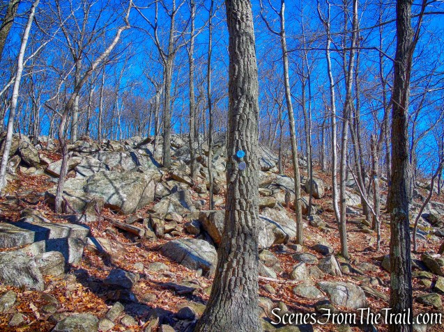 Joint Breakneck Ridge and Notch Trails