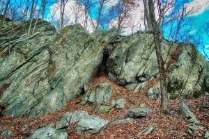 Rocks Trail