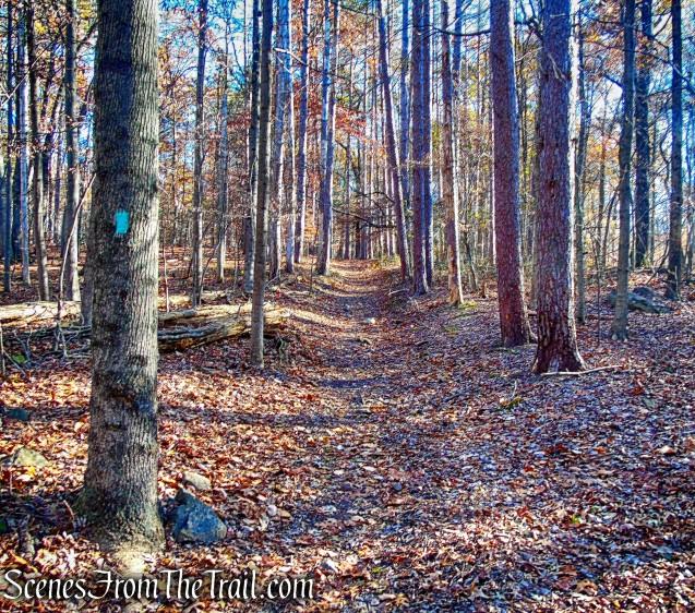 Long Path - Blauvelt State Park