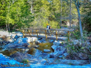 log bridge - Mossy Glen Footpath