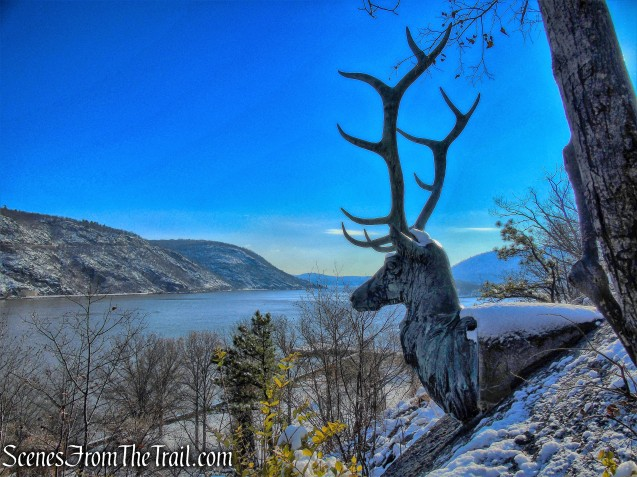 elk's head - Bear Mountain State Park