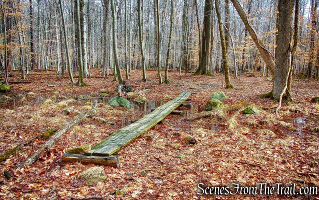 wooden planks - Sylvan Glen Trail