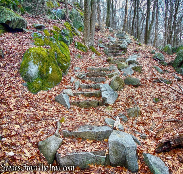 stone steps - Sylvan Glen Trail