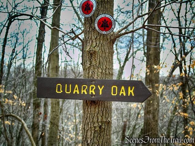 Quarry Oak